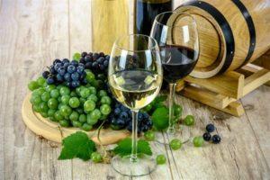 wine tours wine tasting